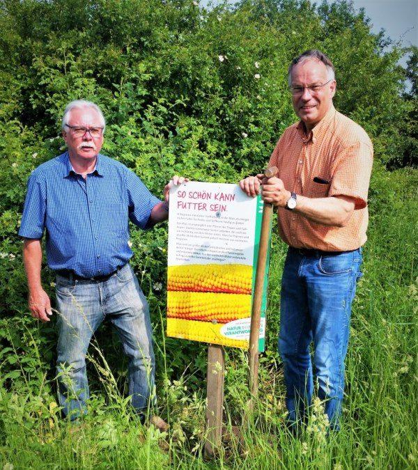 Stadtmarketing hat den Lehrpfad Ackerkulturen wieder ausgeschildert