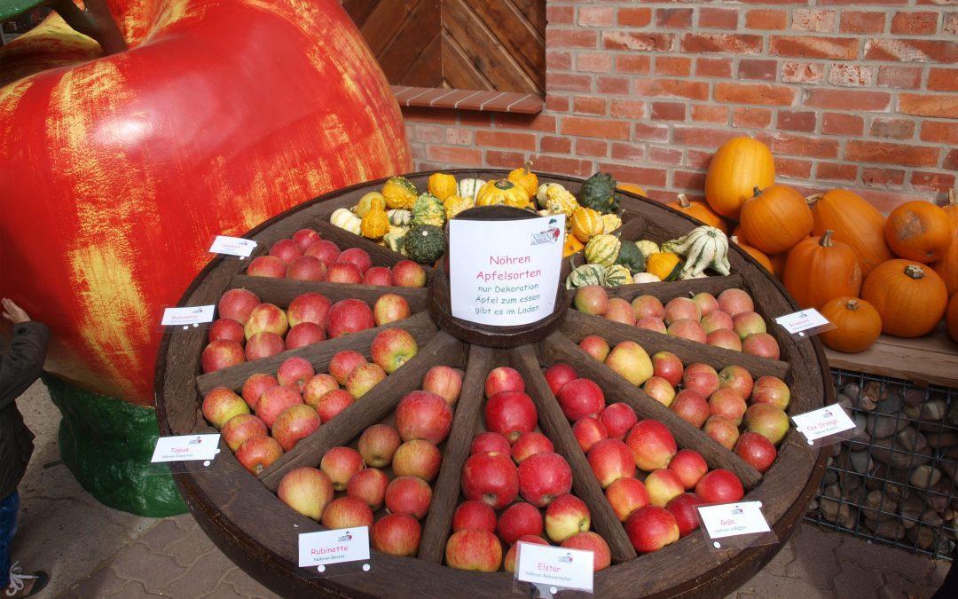 Apfelfest auf Nöhrenhof am 23.09.2018
