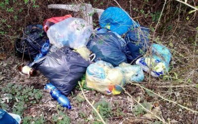 Für eine saubere Stadt: Stadtmarketing ruft zum Müll sammeln auf